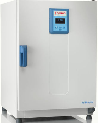Picture of Heratherm IGS60 General Protocol Microbiological Incubator