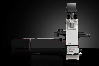 Picture of Leica Stellaris 8 STED